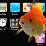iGoldfish - possible agent on iPhone/iPod Touch