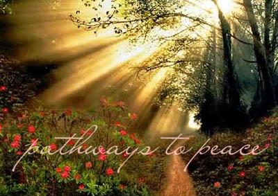 화상영어회화 - Pathways to Peace