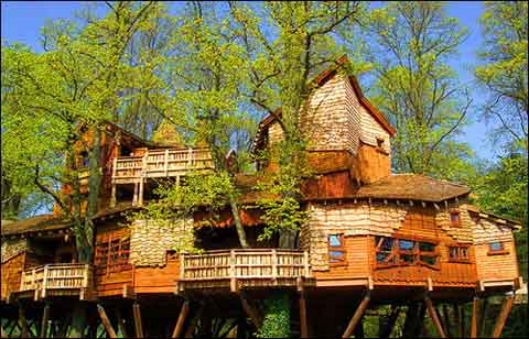 Nice Tree Houses just blogging it!: beautiful tree houses