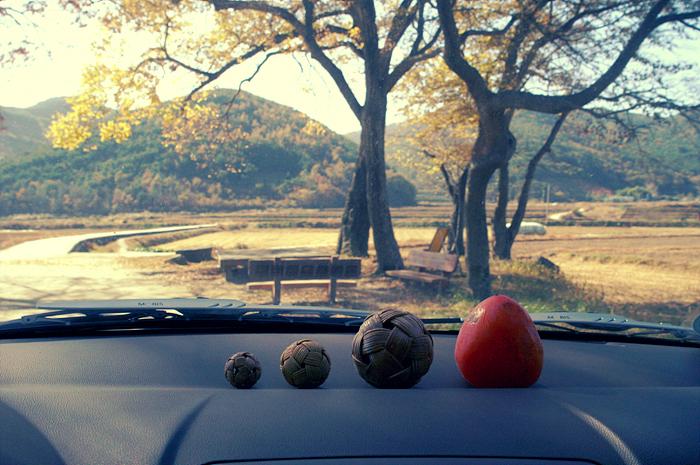 감나무풍경